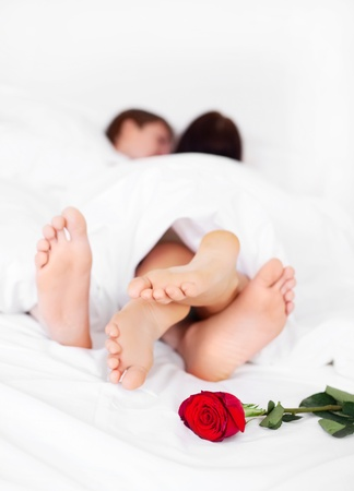 feet of a young couple on the bed at home with a rose lying on the bed  (focus on the flower)