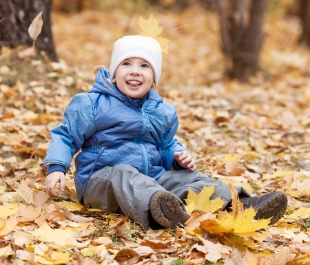 sitting on the ground: happy laughing three year old boy sitting on the grass  in the autumn park