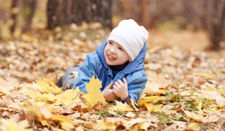 outsides: happy laughing three year old boy  on the grass  in the autumn park