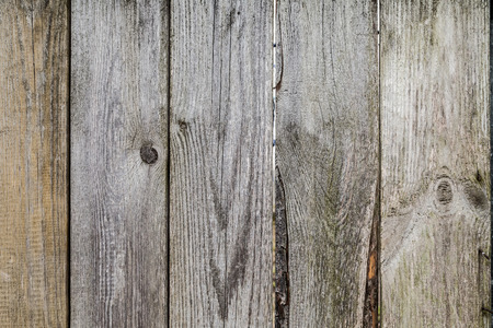 burnt out: Old sun-bleached fence not covered with paint or lacquer in natural color with a pronounced pattern textured wood