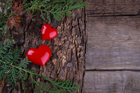 love tree: Two hearts on wooden log.Valentines day background Stock Photo