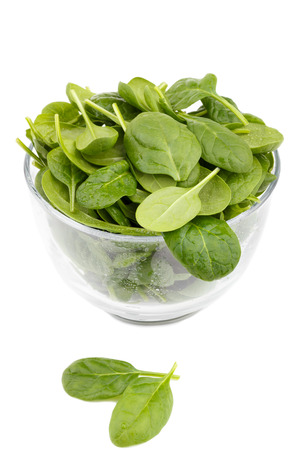 bawl: Spinach in a bawl isolated on white