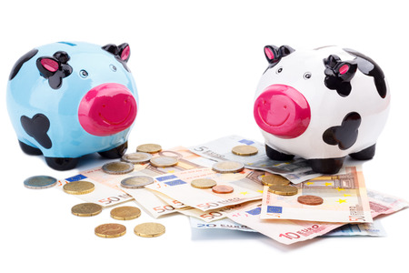 thrifty: Piggy bank and money isolated on white