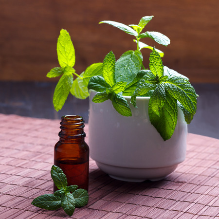 ceramic bottle: Mint essential oil  in brown bottle and fresh herbs in ceramic pot, selective focus Stock Photo