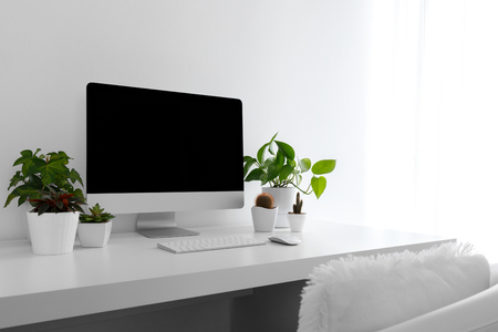 White modern desktop with computer and plants. Minimalistic workplace