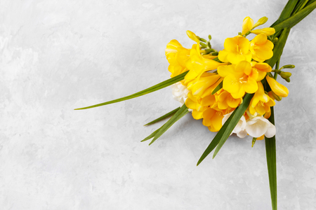 Bouquet of yellow freesias on grey stone background, copy space top view