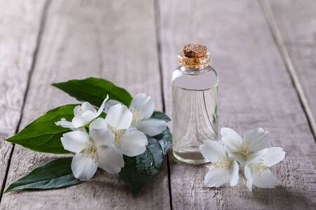 Jasmine Essential oil in a small bottle and flowers on natural wooden background