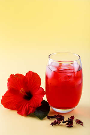 Cold refreshing hibiscus iced ted in a glass with red flower on yellow background, copy space