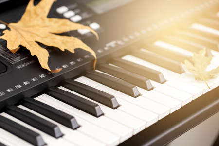Close up of the electronic piano, autumn concept with yellow leaves and blanket
