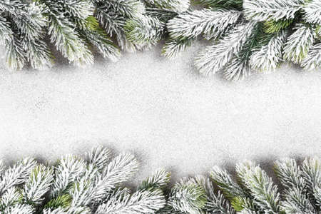 Fir tree branch covered with snow on white background, copy space, Christmas holidays greeting card template Stockfoto