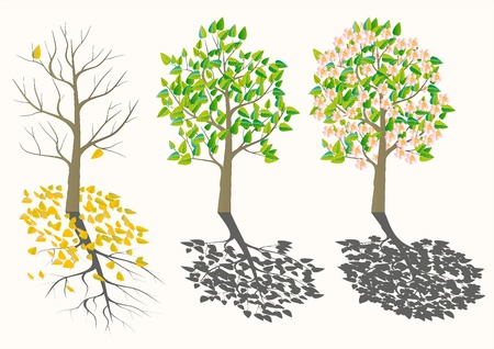seasons tree Stock Vector - 12831998