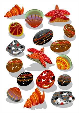starfish, stones and seashell Stock Vector - 13323187