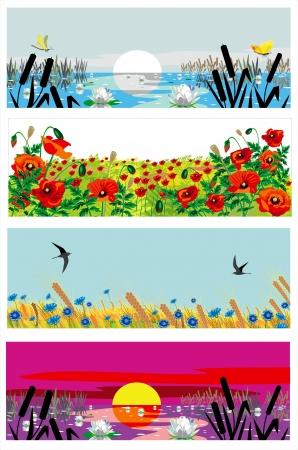poppy field: beutiful banderas de verano Vectores