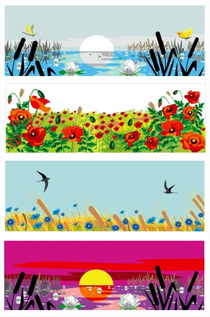 poppy field: beutiful summer banners Illustration
