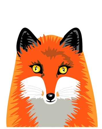 Isolated fox Vector