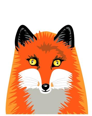 Isolated fox Vector