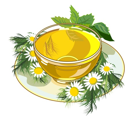 chamomile flower: beautiful cup of herbal tea
