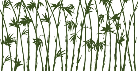 green bamboo silhouettes on white Vector