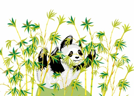 animal nose: small funny panda in bamboo