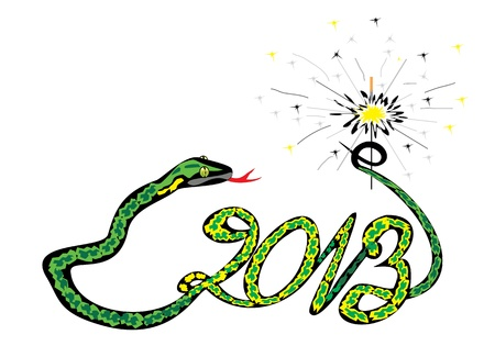 green snake 2013 with a sparkler Illustration