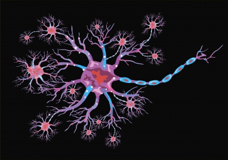 schematic illustration of the neuron on a black background Stock Vector - 16833129