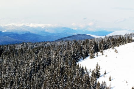 Sunny day in the Carpathian Mountains Stock Photo - 17865201