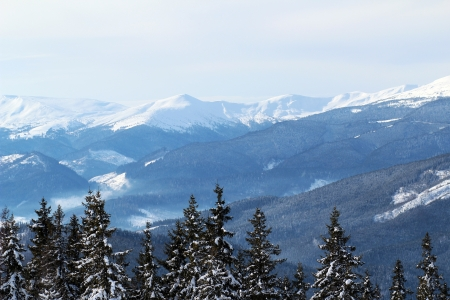 The snowy peaks of the Carpathian Mountains Stock Photo - 17865202
