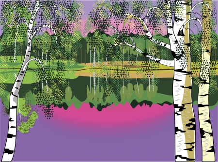Landscape witn birch and lake  Illustration
