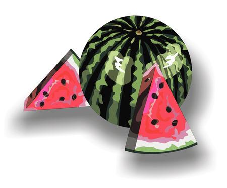 watermelon isolated Stock Vector - 29426430