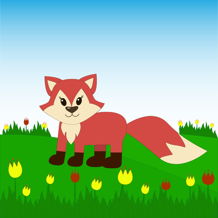 Fox on the field with tulips.