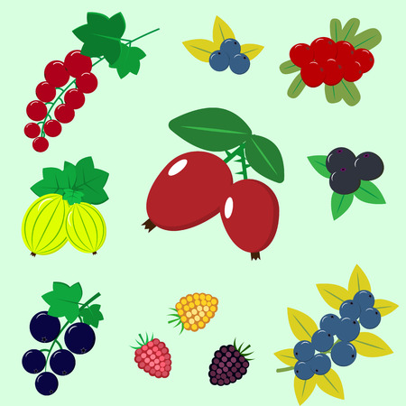 Delicious and sweet berries, collected in the composition.