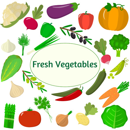 Set of vegetables. Organic vegetarian healthy food isolated on white background. Vector. Illustration