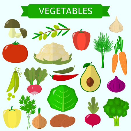 Set of vegetables. Organic vegetarian healthy food isolated on white background. Vector. Stock Vector - 86177490