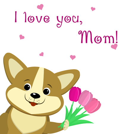 Lovely corgi puppy holds in his paws three pink tulips, congratulates with his mothers day, in the style of cartoons.