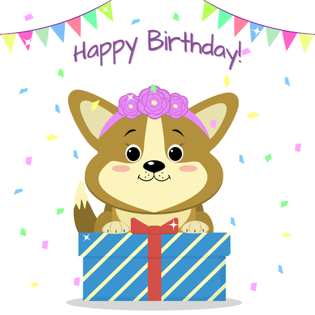 Puppy Corgi with a rim of roses sits and holds a box with a gift on the background of confetti and flags. Happy Birthday. Illustration
