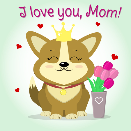 Cute puppy corgi with a crown and medallion, sitting next to a vase with tulips, cartoon style vector, flat design. Congratulations, Happy Mothers Day.