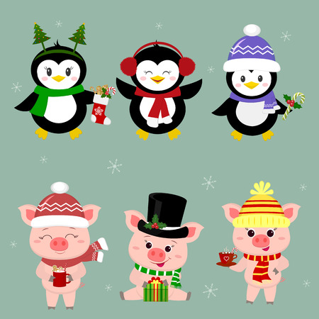 New Year and Christmas card. A set of three piglets and three penguins is typical in different hats and poses in winter. Gift box, candy, hot drink. Cartoon style, vector.