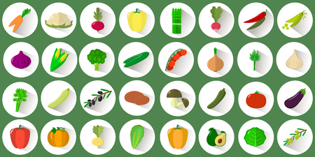 Mega icon set of various vegetables and herbs in a white circle with a shadow on a green background. Logo, vegetables for collective farm. Flat style vector. Illustration