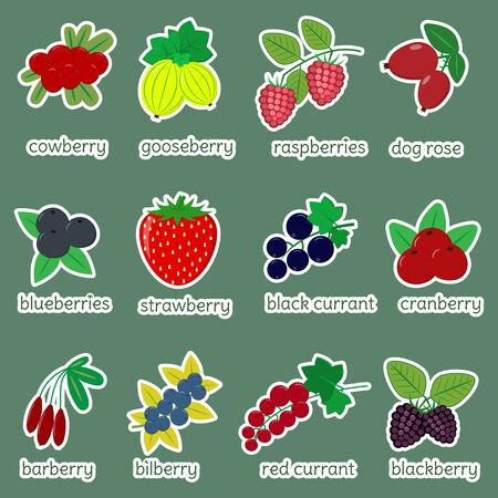 Sticker collection set of ripe berries, icon of twelve elements in a white stroke on a green background with text. For your design cards, scrapbooking, crafting. Flat design, vector illustration. Zdjęcie Seryjne - 139829632