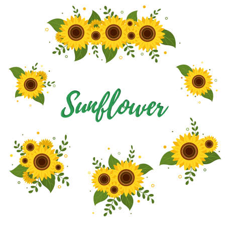 Sunflower and leaves, a collection of six bouquets isolated on a white background. Vector illustration. Ilustração