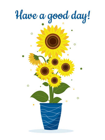 Postcard bouquet of sunflowers and leaves in vase for flowers on light background. Vector illustration