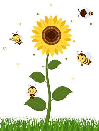 Four cute bees fly to the sunflower to collect nectar. Vector, cartoon style