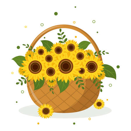 Bouquet of yellow sunflowers and leaves in a wicker basket on a white background. Vector illustration