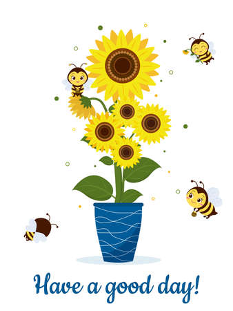 Postcard bouquet of sunflowers in a blue vase and four cute bees on a white background. Vector illustration, cartoon style