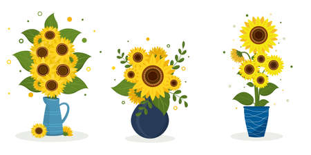 A set of three sunflower bouquets in a blue jug, a blue round vase and a blue vase with white stripes. Vector illustration for your design Ilustração