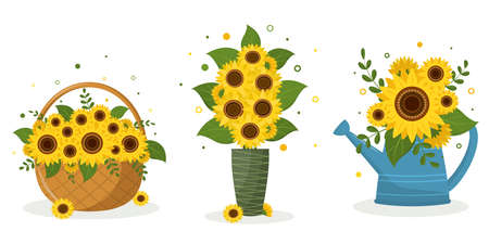 A set of three bouquets of sunflowers in a garden watering can, in a wicker basket, in a green vase and in a blue watering can. Vector illustration for your design Ilustração