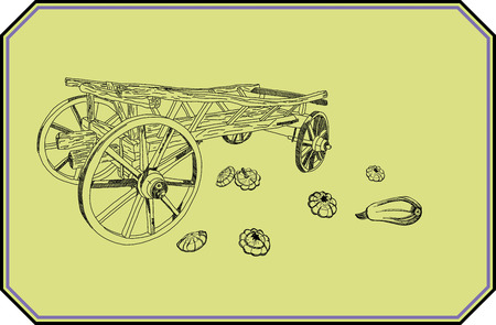 zucchini: wagon zucchini harvest garden