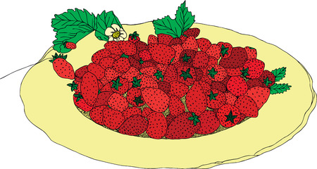 berry: strawberry berry crop dessert plate Illustration