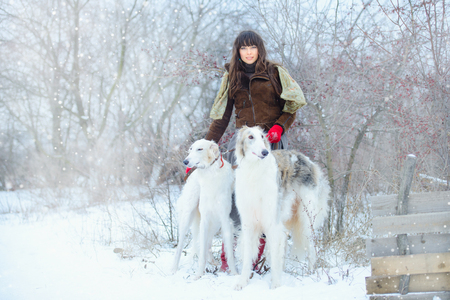 Christmas walk. Beautiful surprised woman in winter clothes with greyhound dogs graceful winter background with snow, emotions. portrait of a woman. New Year.