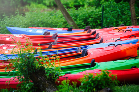 many kayaks stand on the green shore of the shore.